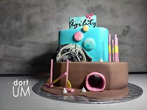 Agility cake - Cake by dortUM