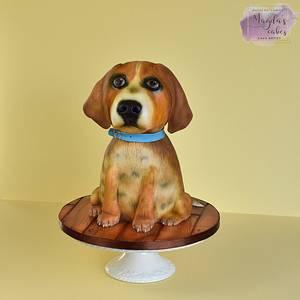 Beagle - Cake by Magda's Cakes (Magda Pietkiewicz)