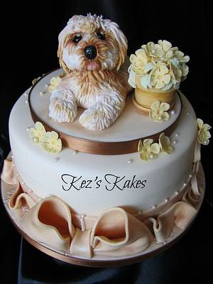 Cute 'Daisy' the Lhasa Apso Dog and Flowerpot Cake. - Cake by Kerry Rowe