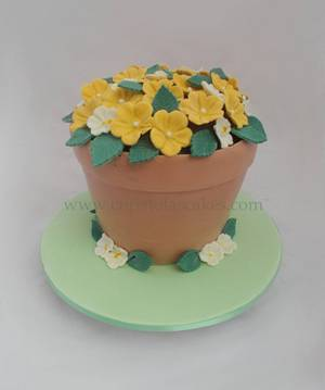 Flower Pot Cake - Cake by ChristolasCakes