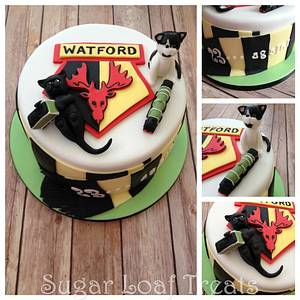 Watford FC Cats and Trains - Cake by SugarLoafTreats
