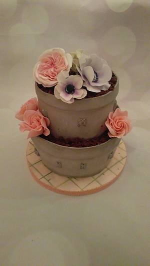 Flower pot - Cake by Klara Liba