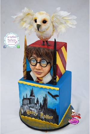 CPC HOGWARTS CHALLENGE 2017- HARRY AND HEDWIG - Cake by Sarahy Millán