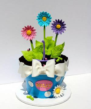 Flower pot of Daisies - Cake by Kerrin