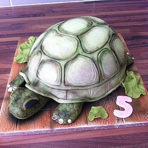 Lettuce & Turtle - Cake by Licky Lips Cakes