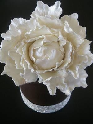 Peonia cake. - Cake by mariaencinas