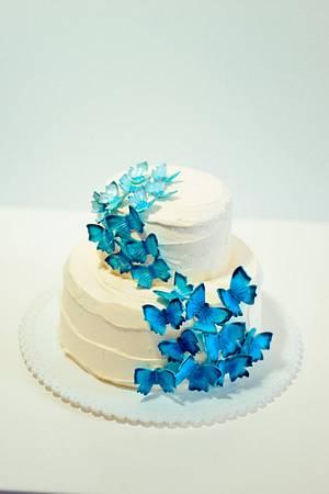 Ombre Blue Butterfly - Cake by Tami Saikaly