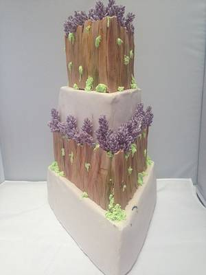 Spring time love  - Cake by For Goodness Cake