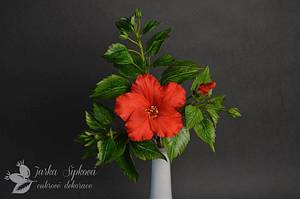 Hibiscus - Cake by JarkaSipkova