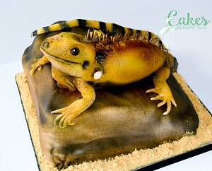 Iguana on a Rock - Cake by Carrie-Anne Dallas