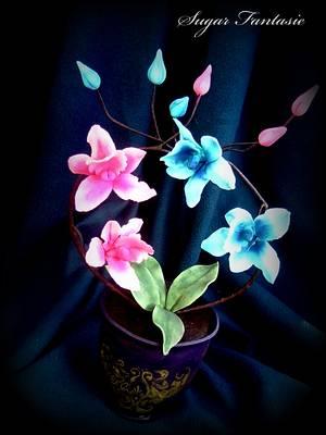 In love orchids - Cake by Ildikó Dudek