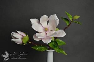 Magnolia - Cake by JarkaSipkova