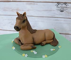 Horse on a cake! - Cake by Deb Williams Cakes
