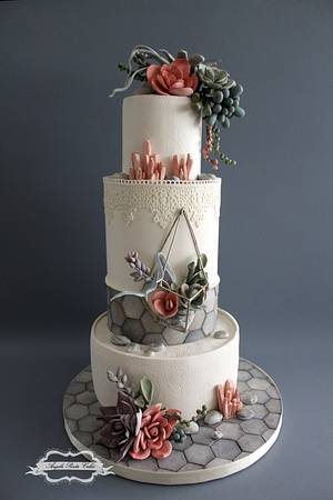 Succulent cake - Cake by Angela Penta