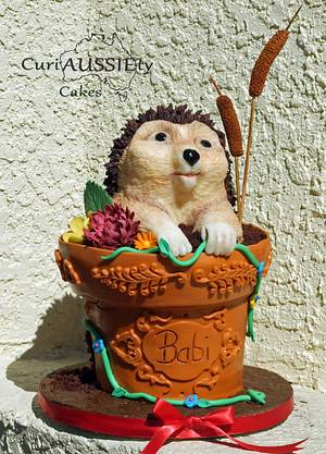Cute Hedgehog in a flower pot cake! - Cake by CuriAUSSIEty  Cakes